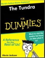 The Tundra for Dummies