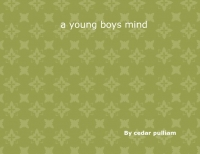 an young boys mind