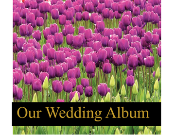 Our Wedding Album