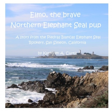 Elmo, the Brave Northen Elephant Seal pup