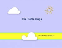 The Turtle Bugs