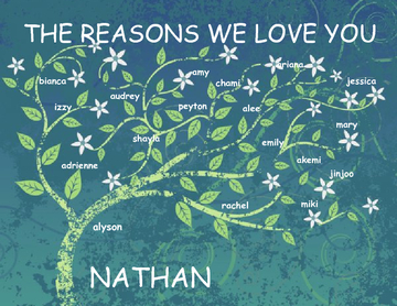 All the Reasons We Love Nathan