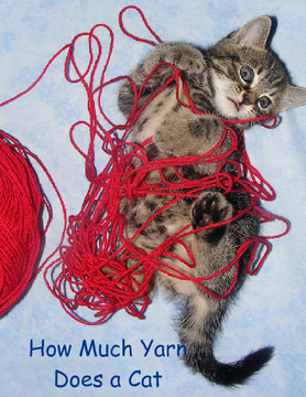 How Much Yarn Does A Cat Need?