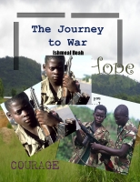 The Journey to War