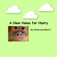 A New Home for Harry