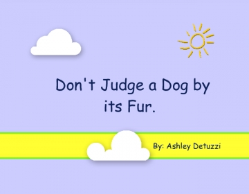 Don't Judge a Dog by its Fur
