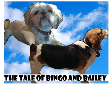 The Tale of Bingo and Bailey
