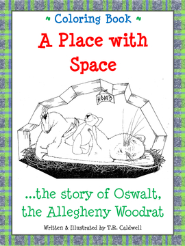 Coloring Book: A Place with Space
