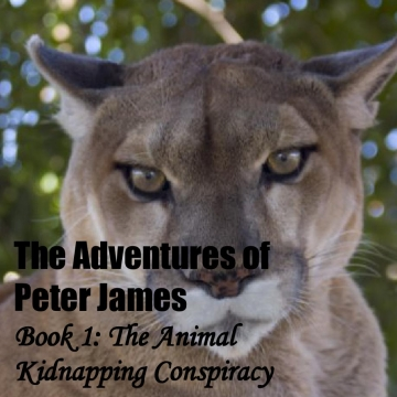 The Adventures of Peter James