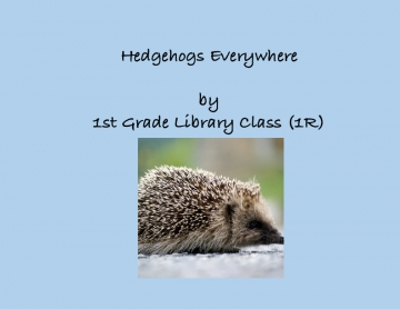 Hedgehogs Everywhere