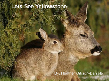 Lets See Yellowstone!