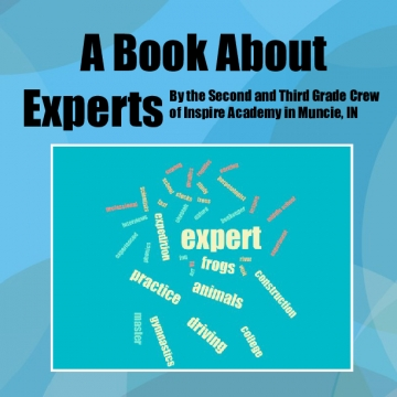 A Book about Experts