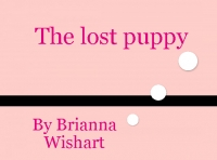 the pet who was lost