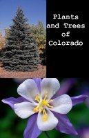 Plants and Trees of Colorado