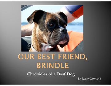 Our Best Friend, Brindle