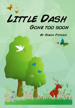 Little Dash