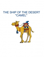 the ship of the desert