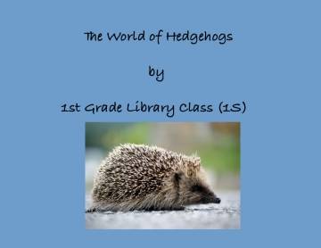 The World of  Hedgehogs
