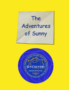 The Adventures of Sunny