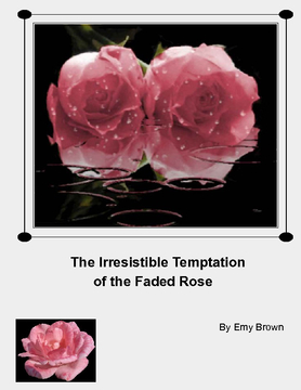 The Irresistible Temptation of the Faded Rose