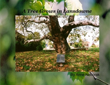 A Tree Grows in Lansdowne