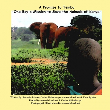 The Promise to Tembo