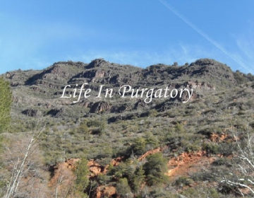 The Inside Scoop on all 14 of the Life In Purgatory characters