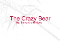 The Crazy Bear
