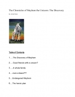 The Chronicles of Mayhem the Unicorn: The Discovery