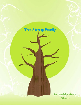 The Stroup Family