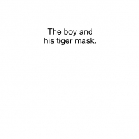 the boy and his tiger mask