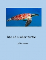 Life a of a Killer Turtle