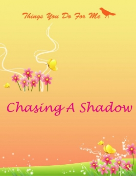 Chasing a shadow