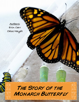 The Story of the Monarch Butterfly