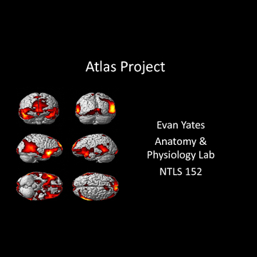 Atlas Project