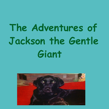 The Adventures of Jackson The Gentle Giant