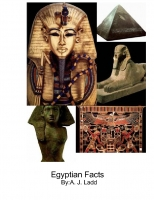 egyptian facts
