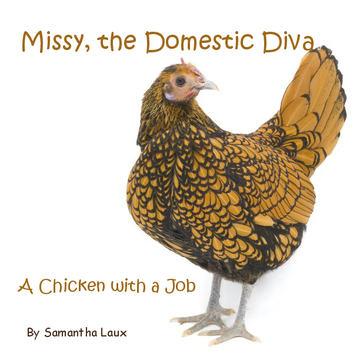 Missy, the Domestic Diva