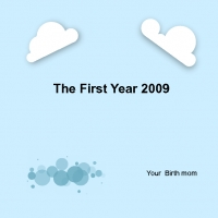 The first year 2009