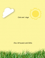 All About Cats and Dogs