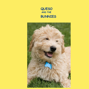 Queso and the Bunnies