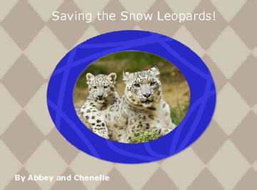 Saving the Snow Leopards!