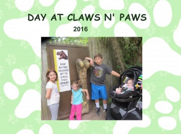 Day at Claws and Paws