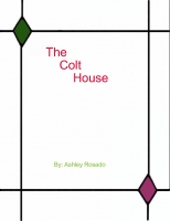 The Colt House