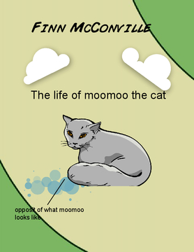 The life of Moomoo the cat