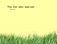 the  cat who  was  lost