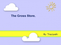 The Gross Store