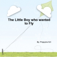 The Little Boy who wanted to Fly
