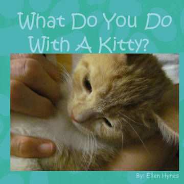 What Do You Do With A Kitty?