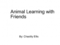 Animal Learning with Friends